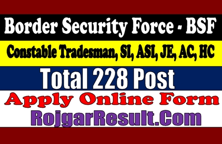BSF Recruitment 2020 Various Post Online Form