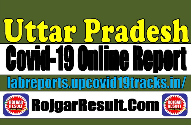 UP Covid 19 Online Report Official Website 2020
