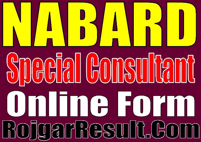 Nabard Special Consultant Recruitment 2020 Apply Online Form